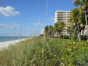 beachfront property at 4005 Gulf Shore Blvd N, #106, Naples, FL 34103